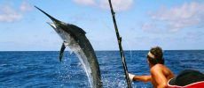 Deep sea fishing in Cayo Largo